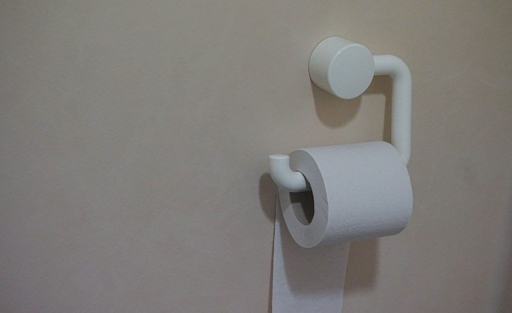 toilet paper in a septic system