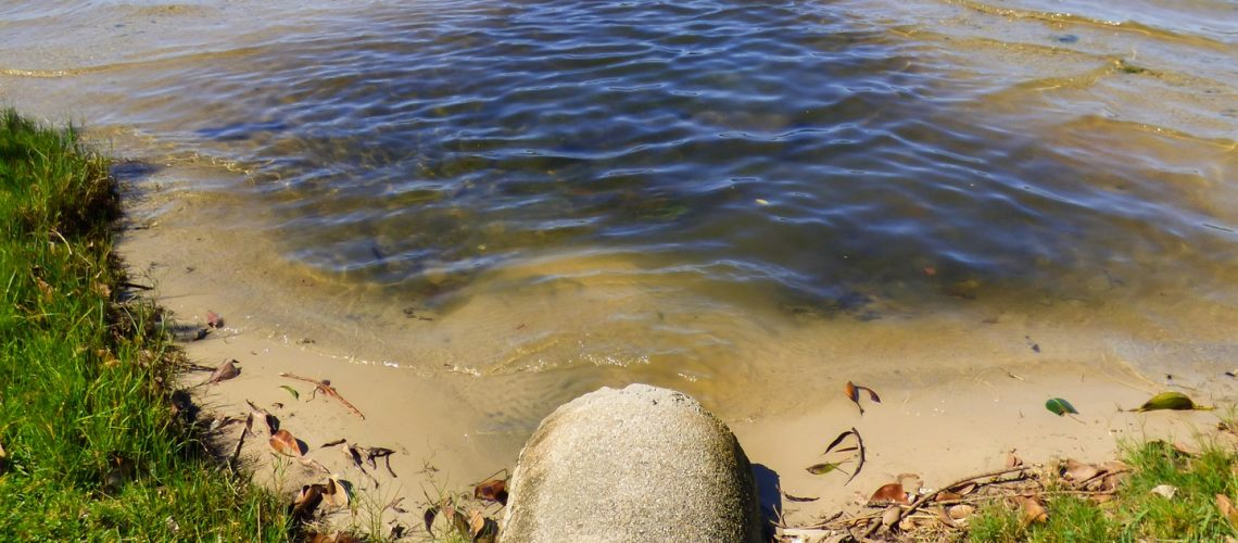 sewage lagoon